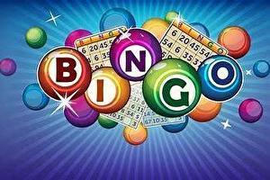 Nico Bingo